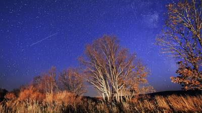 Orionid Meteor Shower 2021: 5 photos captured by skygazers